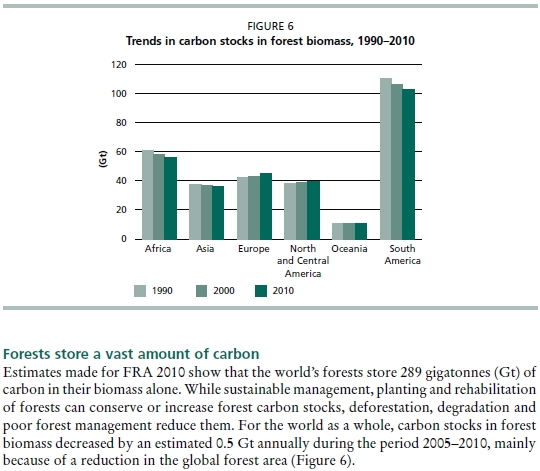 Forest Carbon Stocks By-Continent Chart FAO Forest Report